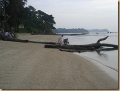Andaman - Nov 2010 075